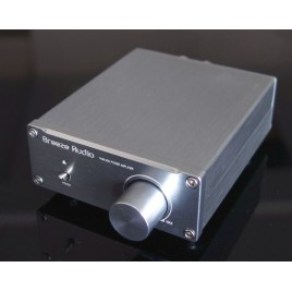 China Top Selling HIFI EXQUIS 2.0 stereo digital amplifier TPA3116 50Wx2 high level components without power supply